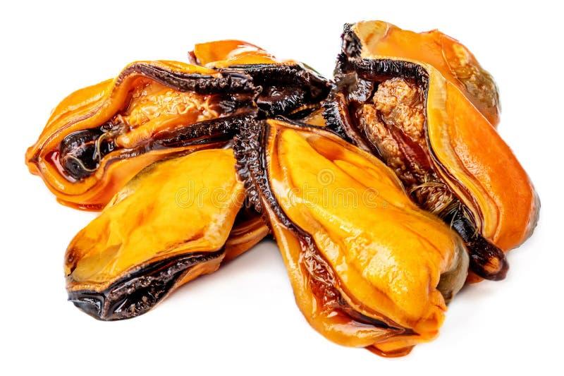 Mussels bez skorupy odizolowywającej na białym tle Mussels gotowi jeść, zamykać w górę fotografia stock