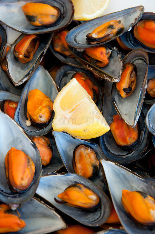 Free Mussels Boiled With A Squeeze Of Lemon Royalty Free Stock Photo - 15486565