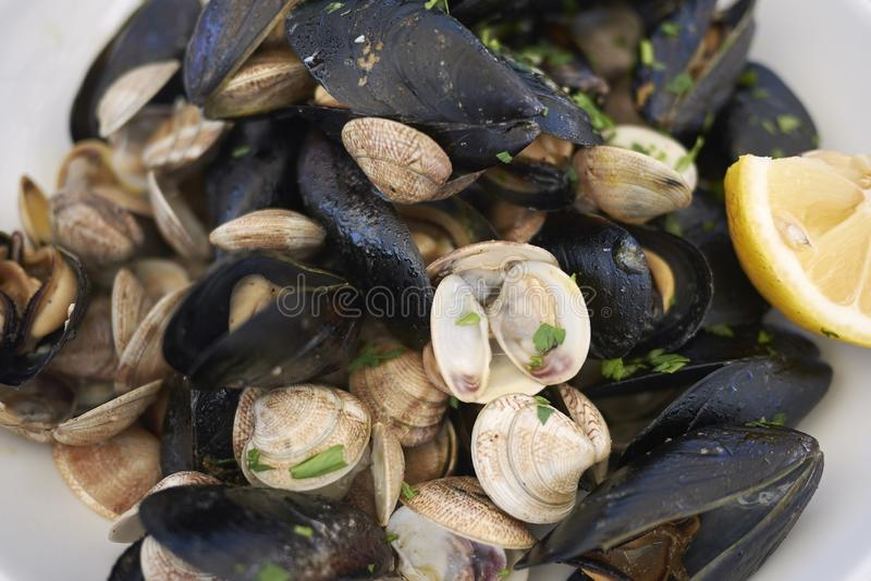 Mussels and clams with lemon stock photos