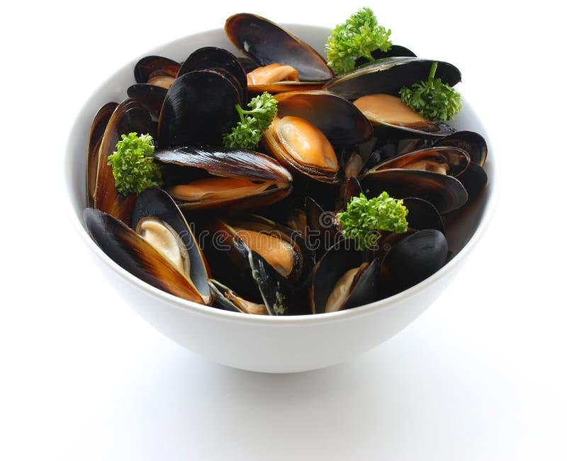 mussels dekatyzowali biały wino obraz stock