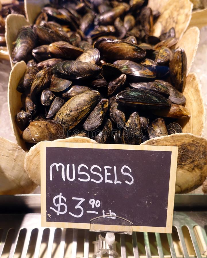 Mussels for Sale in a Seafood Market. Mussels on display in a cooler and on sale in a specialty food store store royalty free stock photography