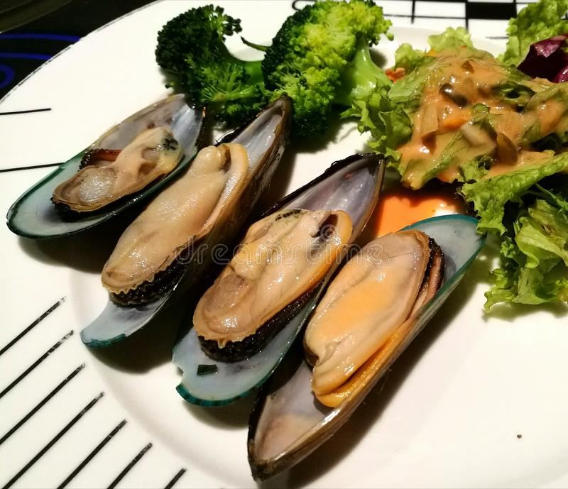 Mussels with fresh salad. Taste incredible simply steamed in a light shallot sauce royalty free stock photo