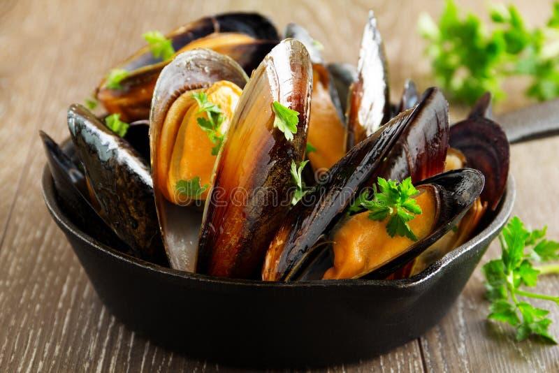 Mussels gotujący w winie obrazy royalty free