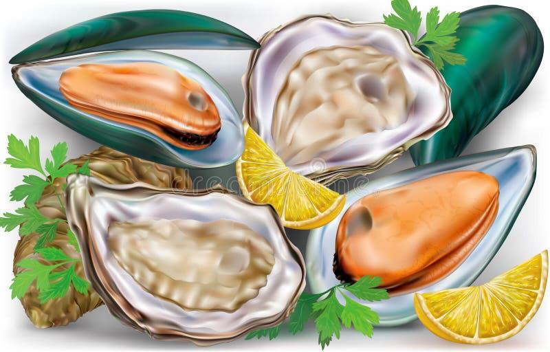 Mussels i ostrygi royalty ilustracja