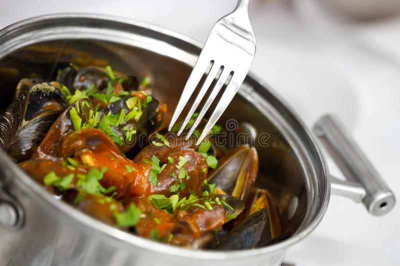 Download Mussels nature stock photo. Image of white, plate, nutrition - 24899504