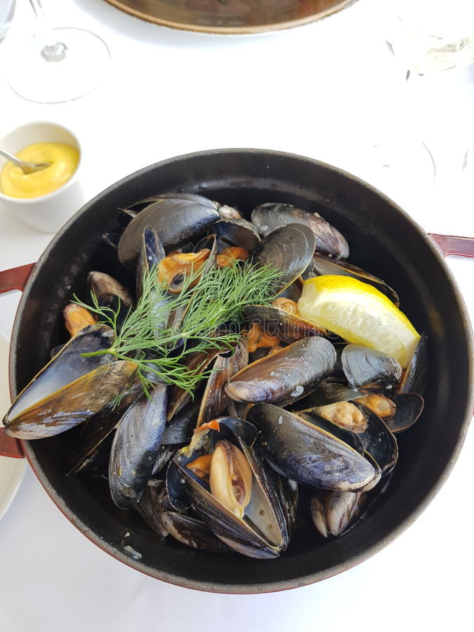 Mussels obiadowi obraz stock