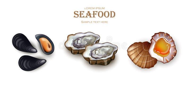 Mussels, ostrygi i przegrzebka owoce morza wektor, Realistycznej szczegółowej 3d ilustraci ustalone kolekcje royalty ilustracja