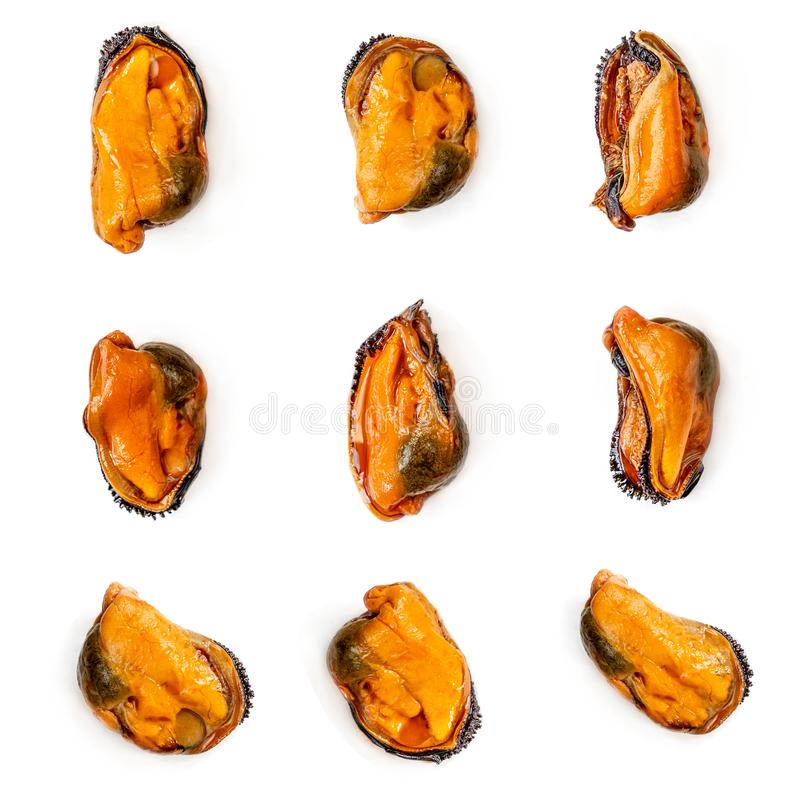 Mussels  pattern background isolated on white.  Mussel without shell.Top view. Creative layout made of seafood. Flat lay. Food stock images