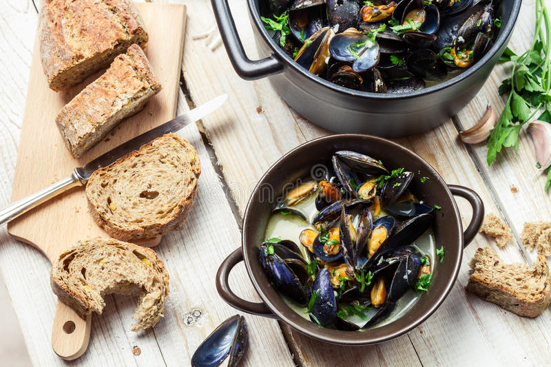 Mussels served with bread for dinner royalty free stock images