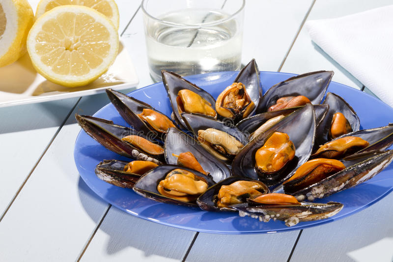 Mussels steamed. Just for eating with lemon and a glass of white wine on a blue wooden table royalty free stock photos