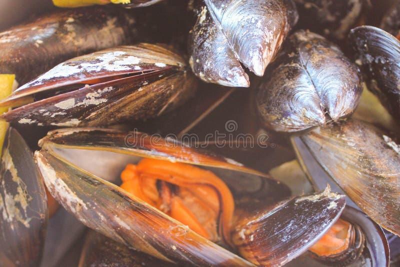 Mussels szczegółu Karmowy smakosz Moules zdjęcia stock