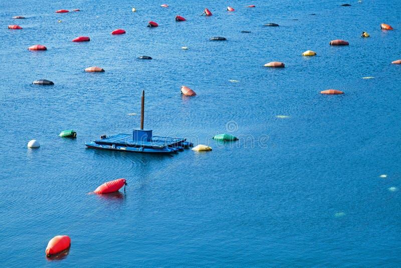Mussels uprawiają ziemię z błękitną łodzią i kolorowy pociesza zdjęcie royalty free