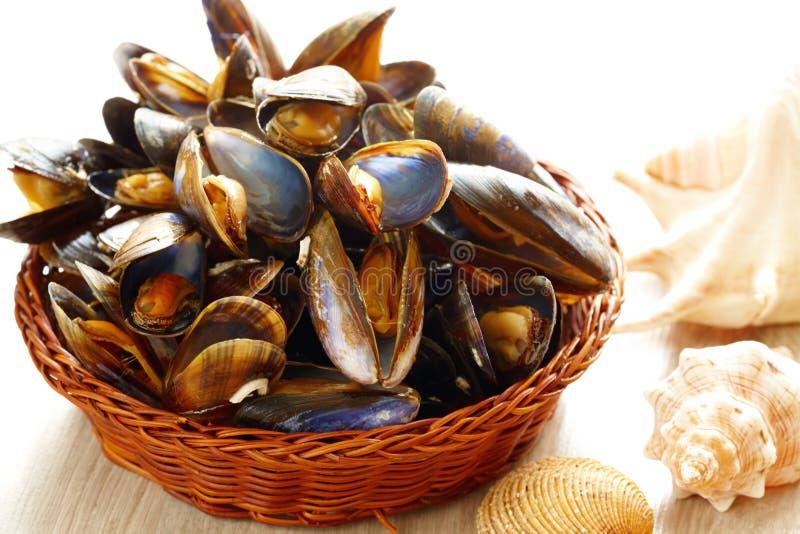 Download Mussels w koszu obraz stock. Obraz złożonej z świeżość - 26283485
