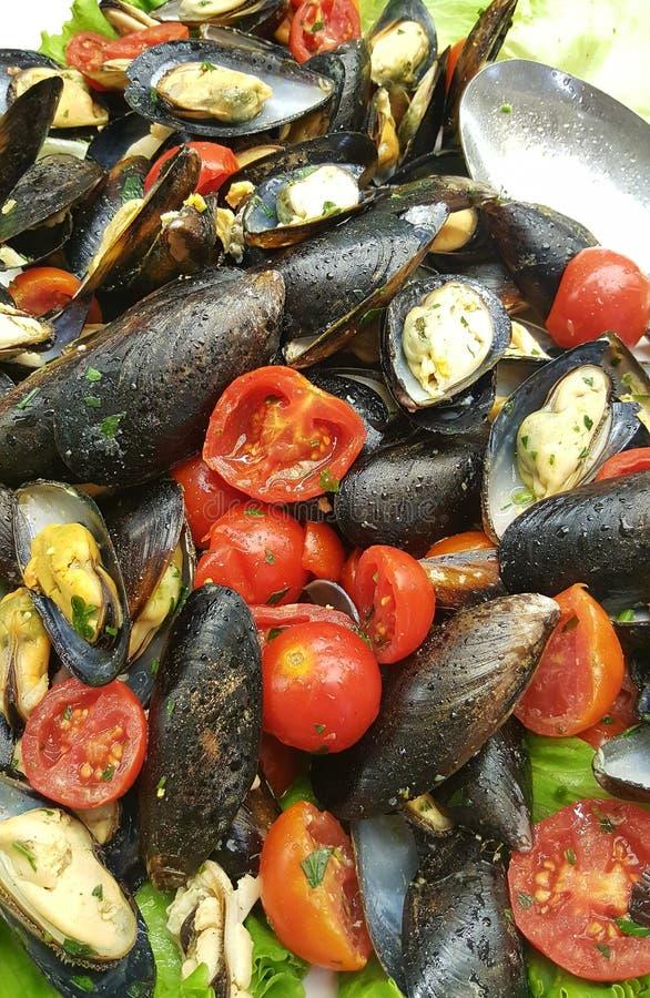 Mussels w skorupie z pomidorami obrazy royalty free