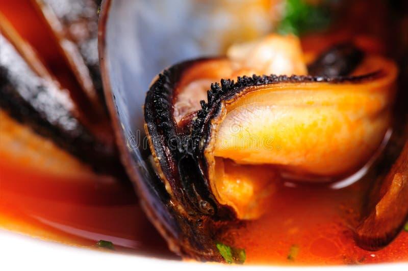 Mussels w włoskim wieśniaka stylu obraz stock