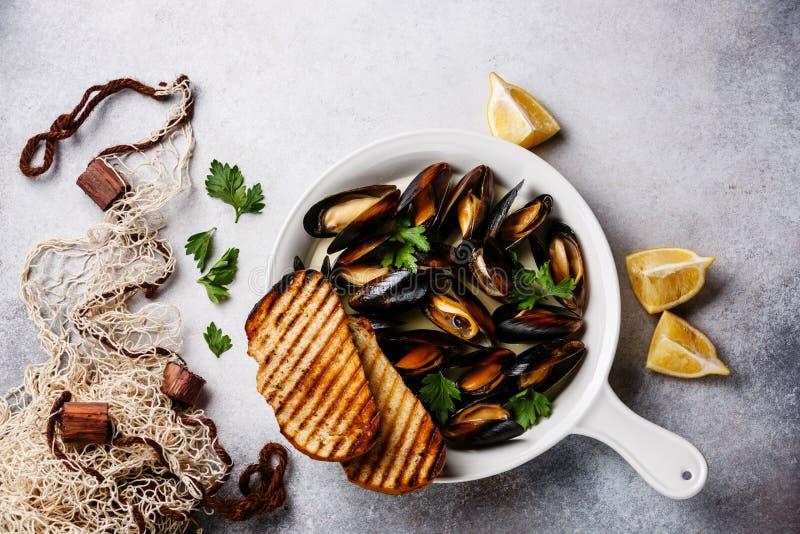 Musslor i den vita matlagningpannan med persilja royaltyfri bild