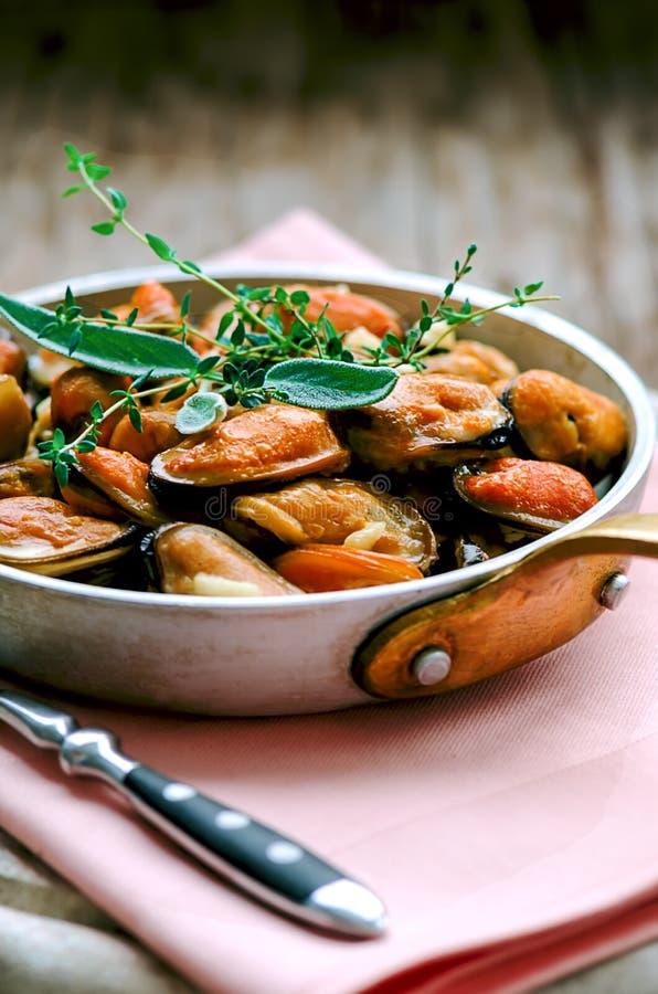 Musslor i kräm- och vitlöksås med provencal örter royaltyfri fotografi