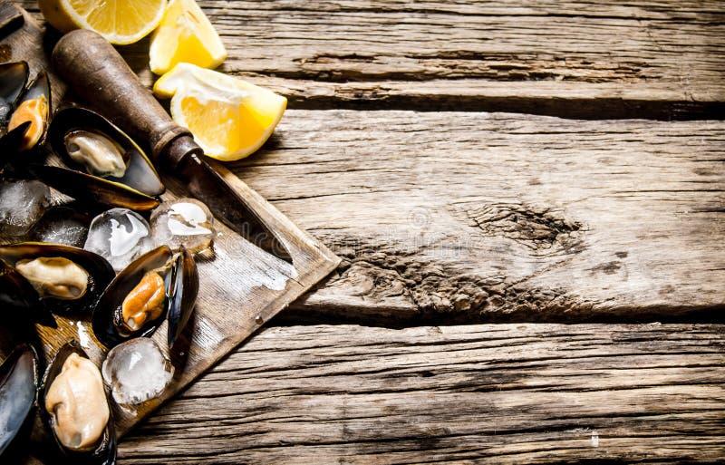 Musslor med citronen och is på ett träbräde arkivbilder