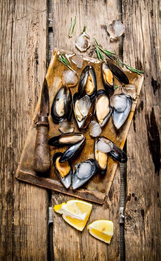 Musslor med citronen och is på ett träbräde arkivfoton