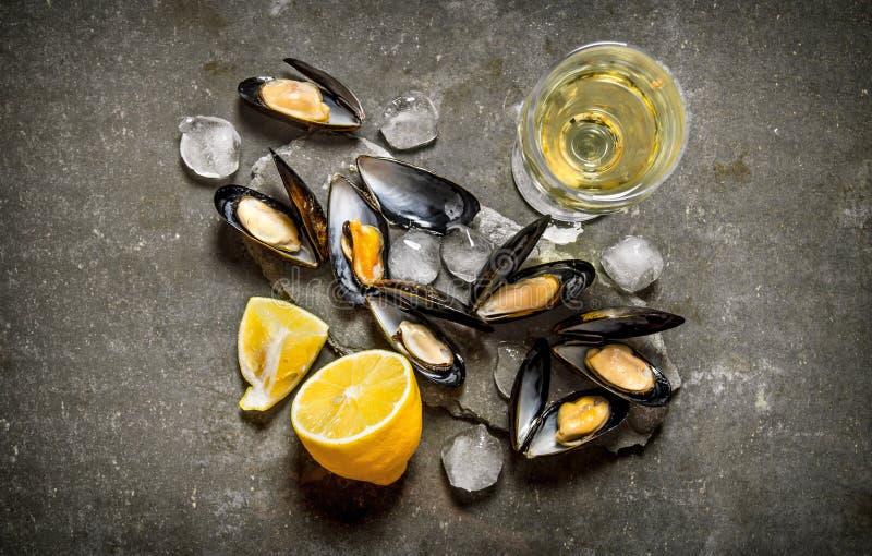Musslor med vin och citronen På stentabellen fotografering för bildbyråer