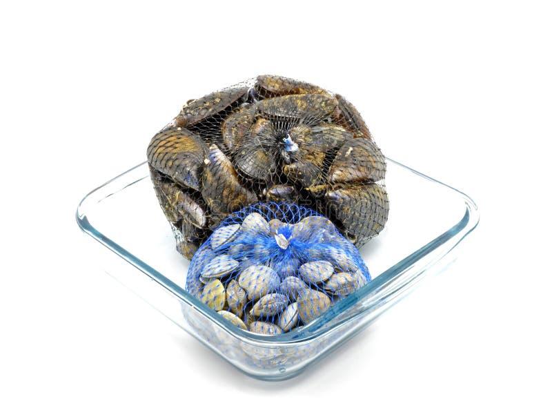 Musslor och musslor förtjänar itu påsar på den glass bunken royaltyfri bild