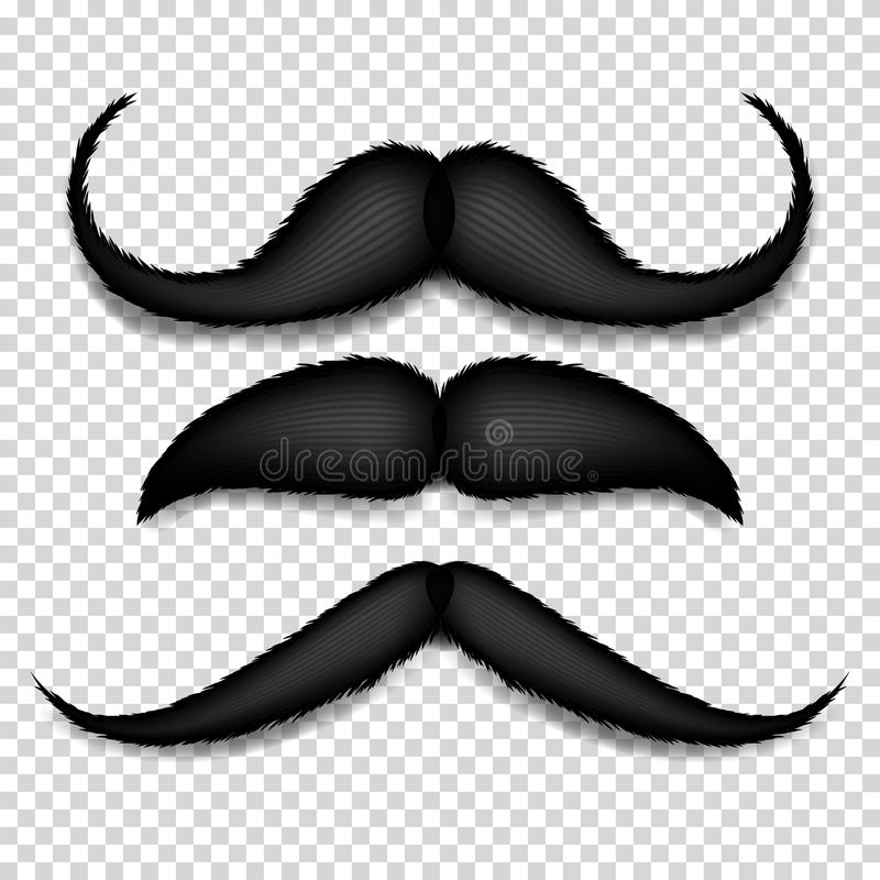 Mustache Isolated Vector. Black Vintage Moustache. Retro Collection Isolated On Transparent Background Illustration vector illustration