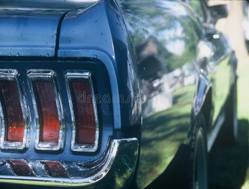 Mustang royalty-vrije stock afbeelding