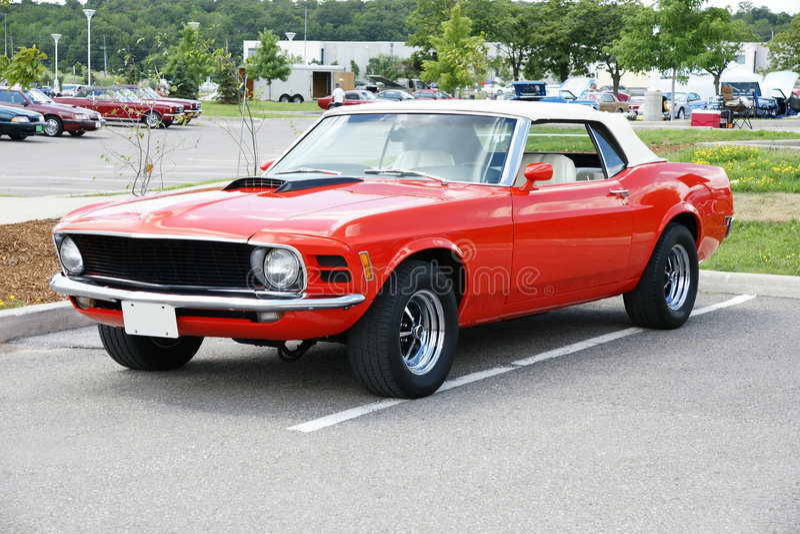 Mustang royalty-vrije stock foto's