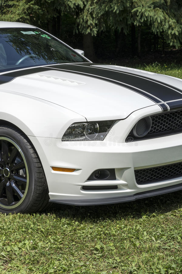 Mustang boss 302 front end. Picture of mustang boss 302 front end with black stripes royalty free stock images