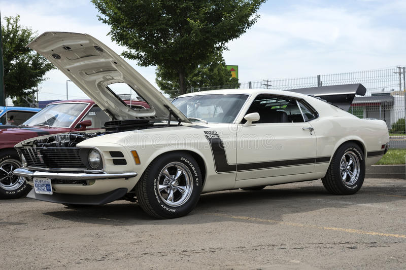 Ford mustang. Grand rassemblement mustang quebec, canada - june 28, 2014 side view of white 1970 mustang boss 302 during car show stock photos