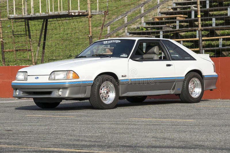 Mustang cobra royalty free stock photo