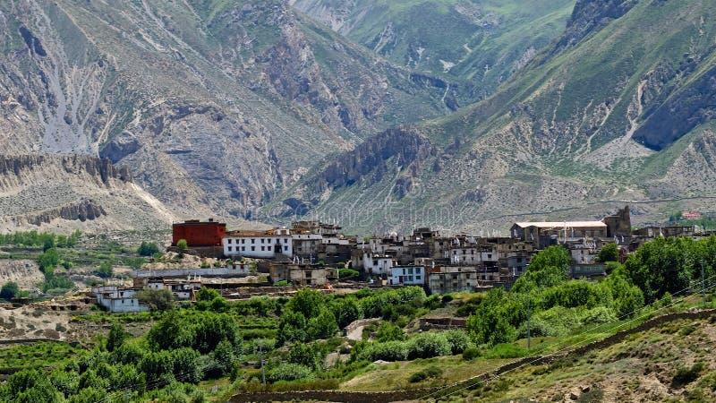 Mustang en Himalaya photos stock