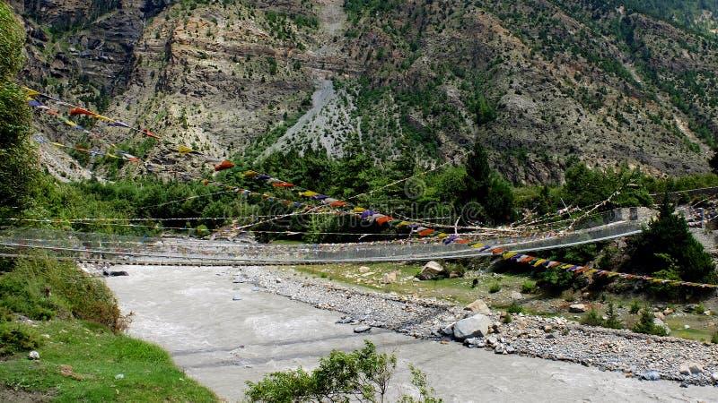 Mustang en Himalaya photos libres de droits