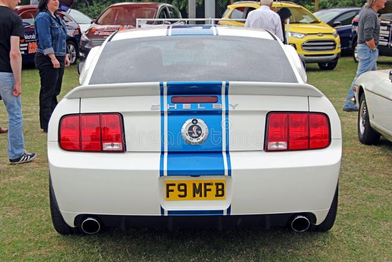 Mustang för Ford shelby kobra gt500 royaltyfria foton
