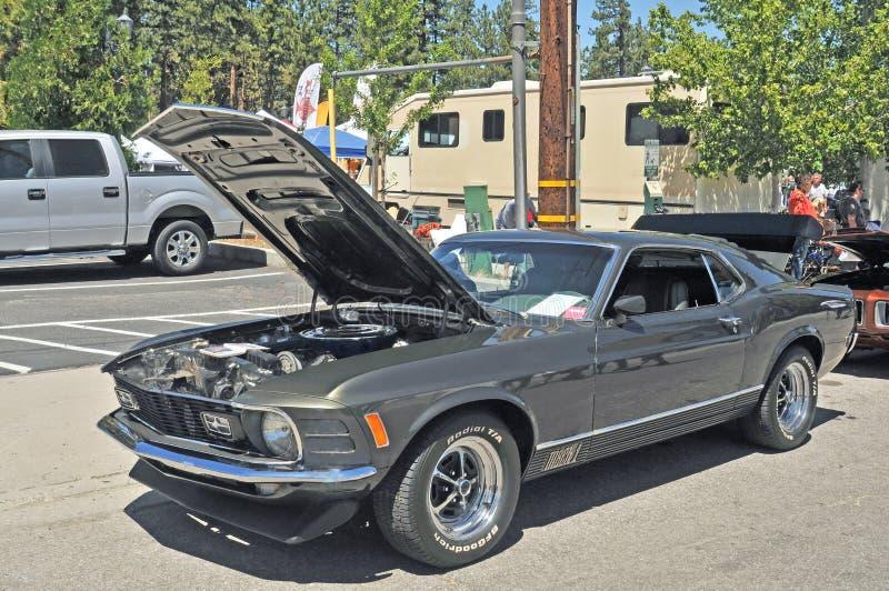 Mustang för Mach 1 royaltyfri bild