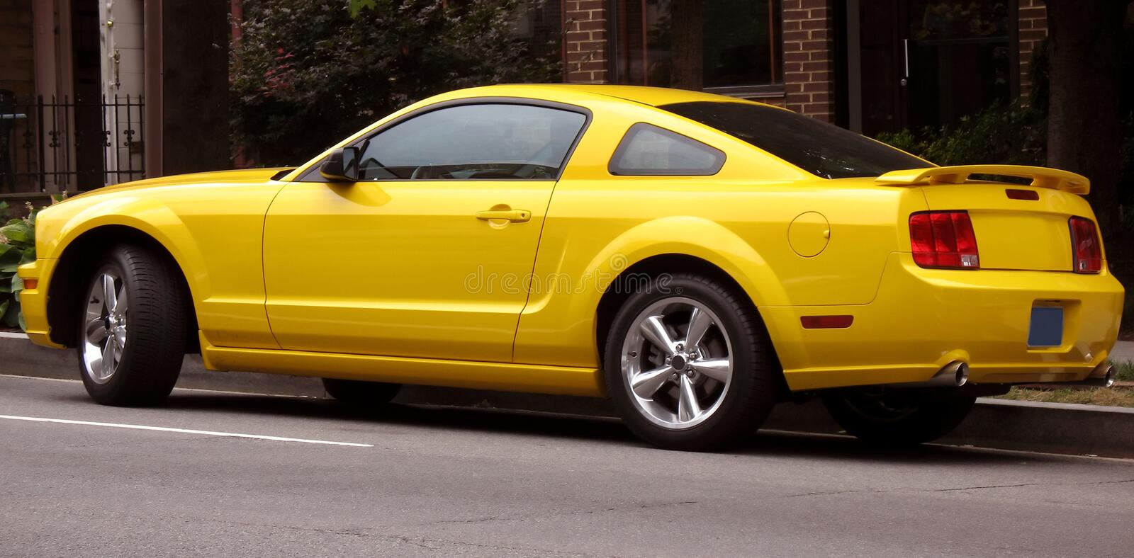 mustang fastback obrazy royalty free