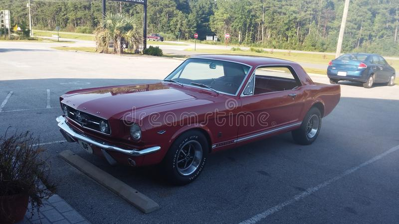 67 Mustang stock images