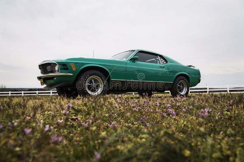1970 Mustang Mach 1 royalty-vrije stock foto's