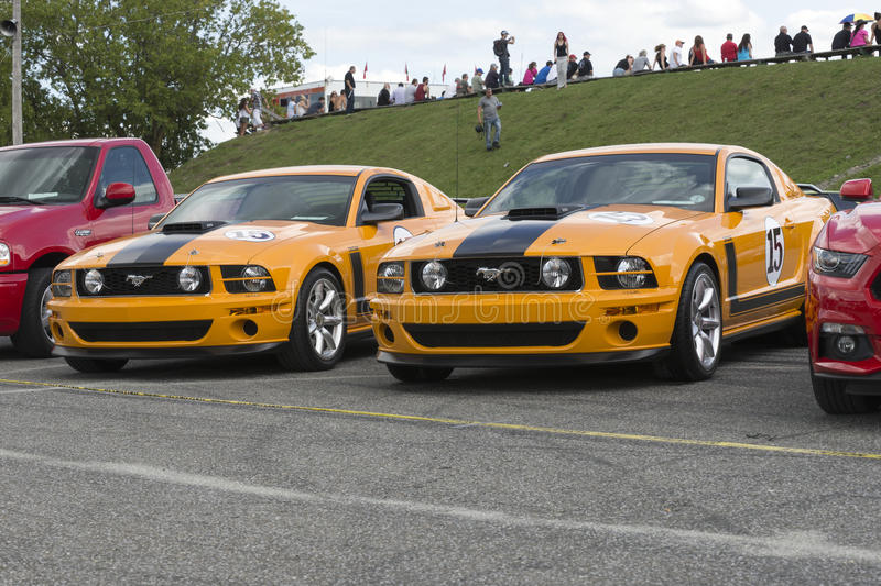 Mustang parnelli jones. Sanair august 8, 2015 picture of pair of parnelli jones mustang tribute at 20e super ford show stock photography