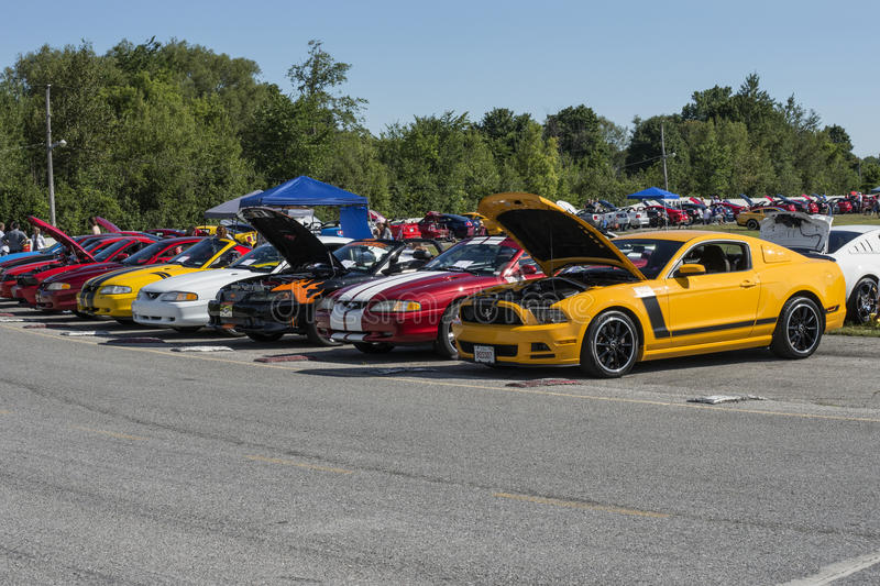 Mustang car show. Sanair august 8, 2015 picture of mustang row with a boss 302 at 20e super ford show stock photos