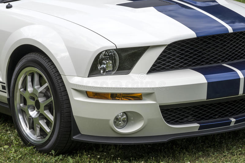 Mustang shelby front end. Picture of white mustang shelby front end with blue stripes royalty free stock photography