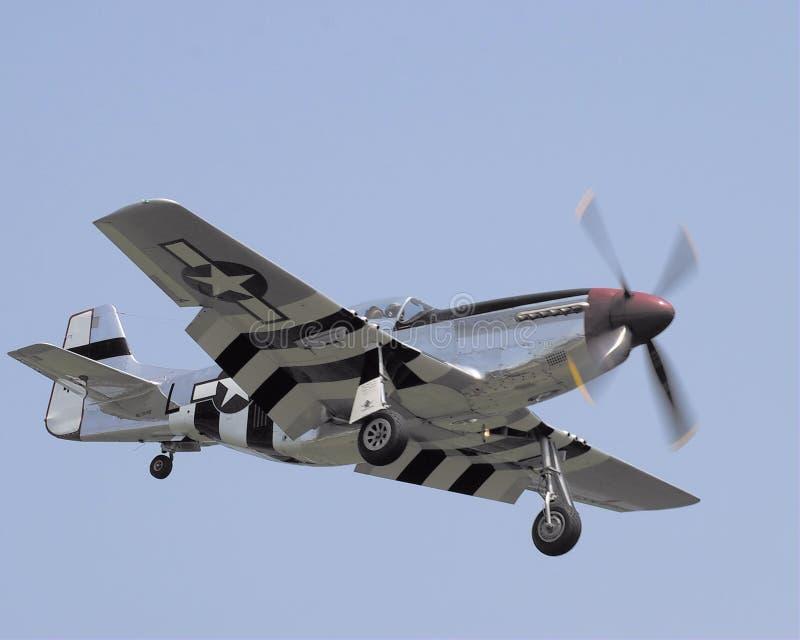 Mustang som P51 in kommer för en landning royaltyfria bilder