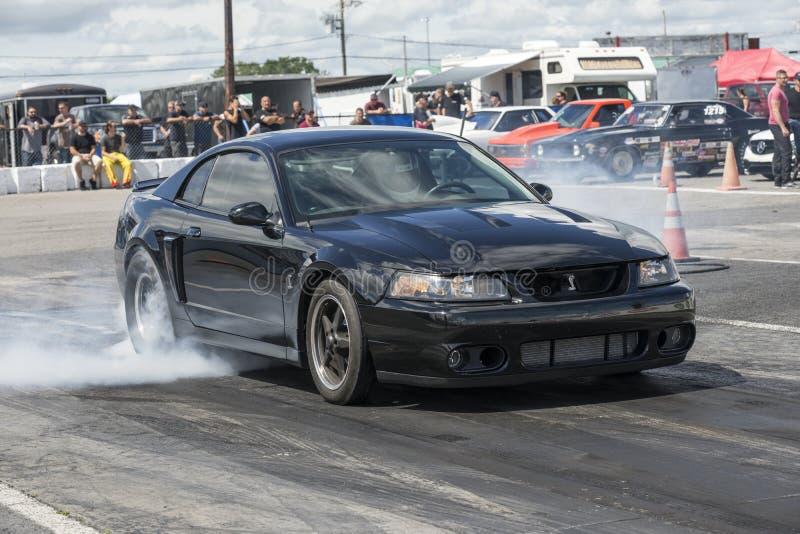 Mustanga burnout przy zaczyna linią zdjęcie royalty free