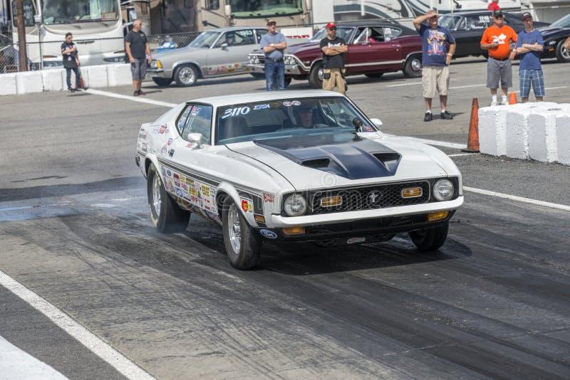 Mustango del vado del vintage en la línea de salida imagenes de archivo