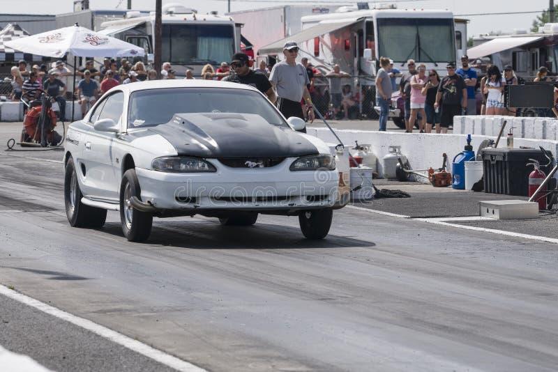 Mustango listo para comenzar en el circuito de carreras en la línea de salida fotos de archivo