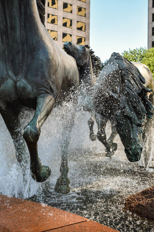 Mustangs of Las Colinas, Irving, Texas. Captivating art display of sculptured Mustangs of Las Colinas, running through water fountain in urban park. Located in royalty free stock photos