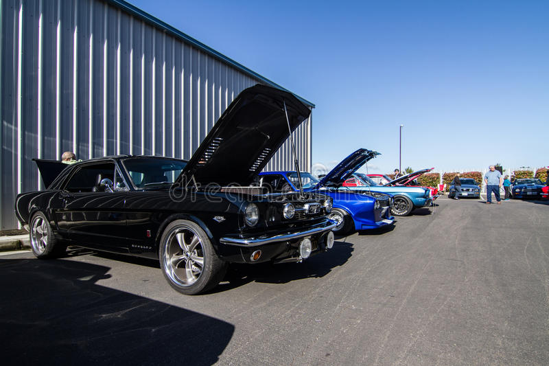 Download Mustangs Plus Stockton Ca Car Show 2014 Editorial Stock Photo - Image of gt500, april: 39508623