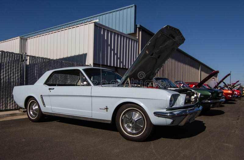 Download Mustangs Plus Stockton Ca Car Show 2014 Editorial Stock Photo - Image of california, paint: 39508768