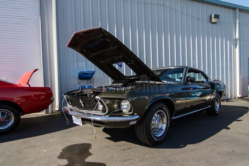 Download Mustangs Plus Stockton Ca Car Show 2014 Editorial Stock Image - Image of california, plus: 39508834