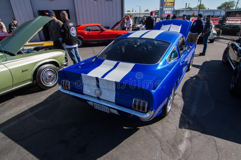 Download Mustangs Plus Stockton Ca Car Show 2014 Editorial Image - Image of hi, performance: 39508895
